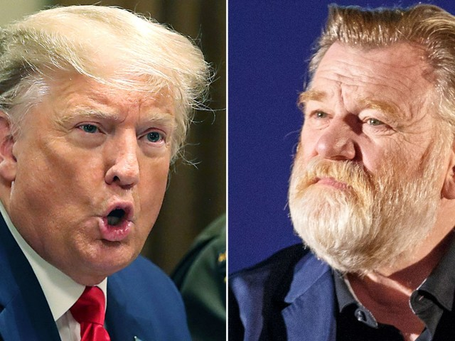Brendan Gleeson to play Trump in TV series based on 'tell-all' book