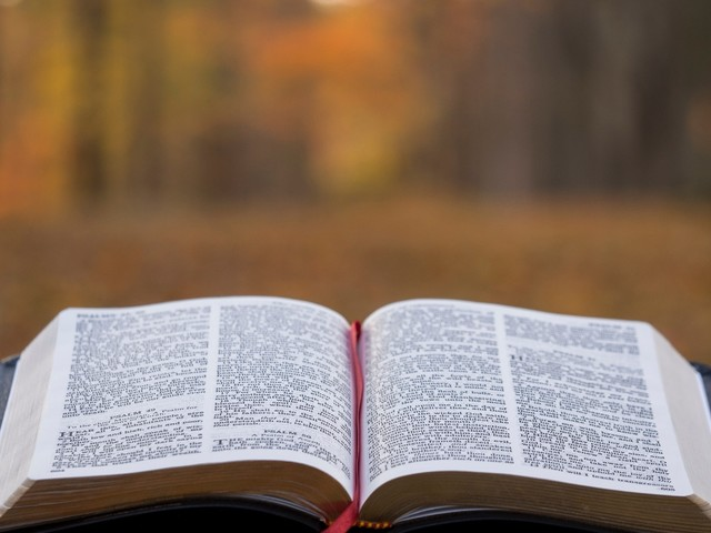 When My Heart Is Cold: Bible Meditation for Beginners