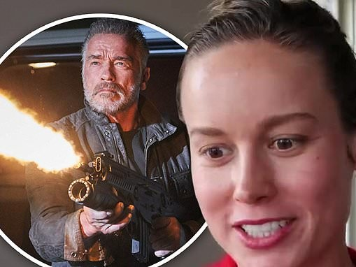 Brie Larson reveals she lost out on a role in the Terminator reboot after getting a flat tire