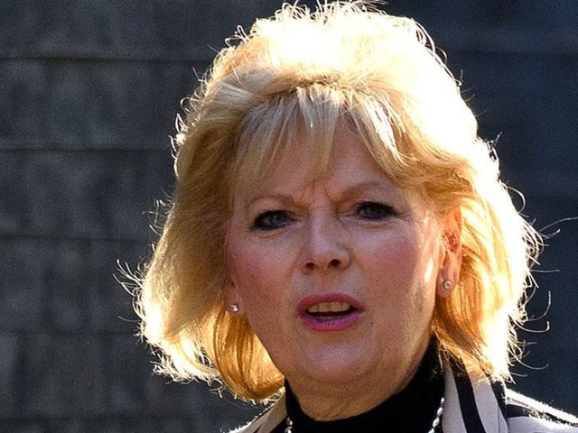 Anna Soubry blames death threats on 'mutineers' headline