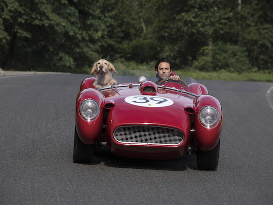 Milo Ventimiglia and His Dog Go for a Drive in 'The Art of Racing in the Rain' Trailer (Video)