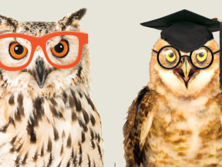 Postgraduate student? Take the PRES or PTES survey and get a £10 voucher