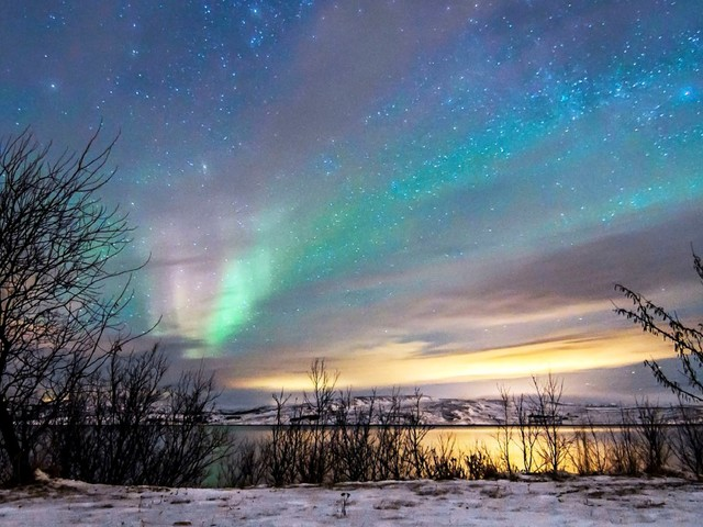 Hurtigruten Winter: 12-day Coastal Norway Astronomy Adventure and the Northern Lights
