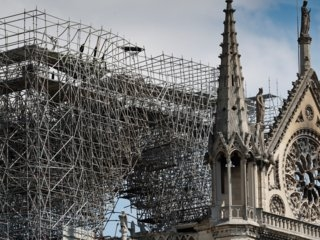 3 hives of bees living in the roof of Notre-Dame Cathedral survived the fire