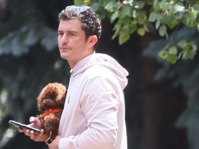 Orlando Bloom 'Feasts Under the Stars' in Aspen With His Dog
