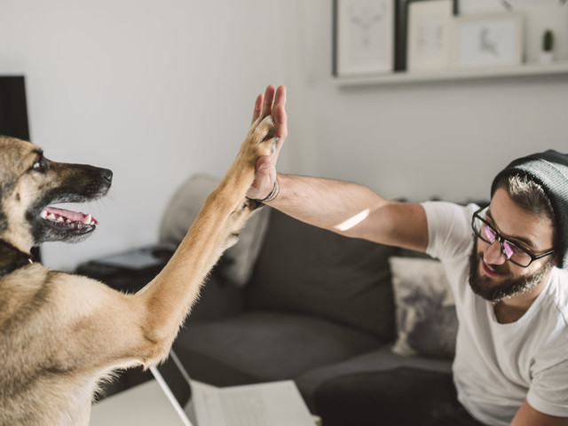 How Future Tech Will Help Us Connect With Our Pets More Than Ever Before