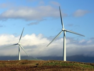Poll: Energy efficiency, renewables, and nature restoration are 'people's priorities' for Covid-19 package