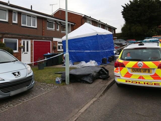 Murder investigation as three die in house fire