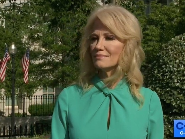 Kellyanne Conway, who once said the term 'Kung Flu' was offensive, now says Trump can use the racial slur because Americans must blame China