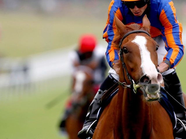 Newsboy's 1-2-3, Nap and best bets for day two of Royal Ascot 2021