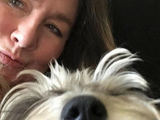Disabled woman distraught after support dog adopted while she was in hospital