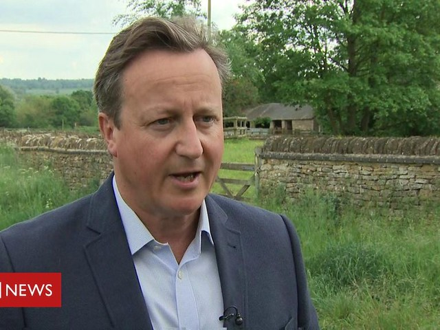 David Cameron: 'I feel desperately sorry for Theresa'