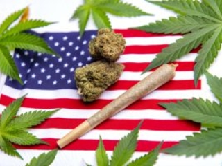 Marijuana News Today: New Poll Shows Support in U.S. for Pot Legalization