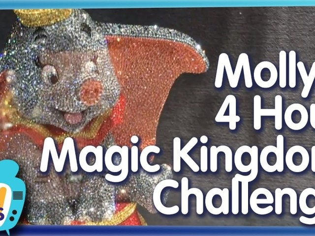 AllEars TV: The Four-Hour Magic Kingdom Challenge