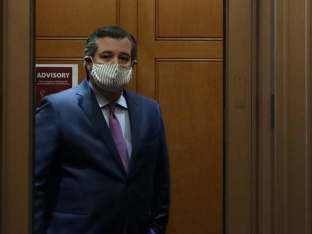 Ted Cruz gets haircut at a Texas salon where owner went to jail for defying a coronavirus shutdown order