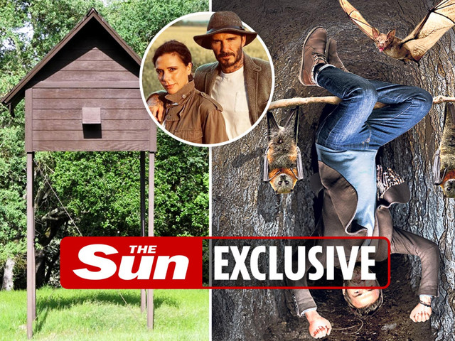 David & Victoria Beckham to build 'bat hotel' at their £6m Cotswolds home