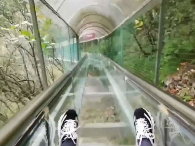 Watch: Tourists test their nerve on glass slide in China's Shangluo