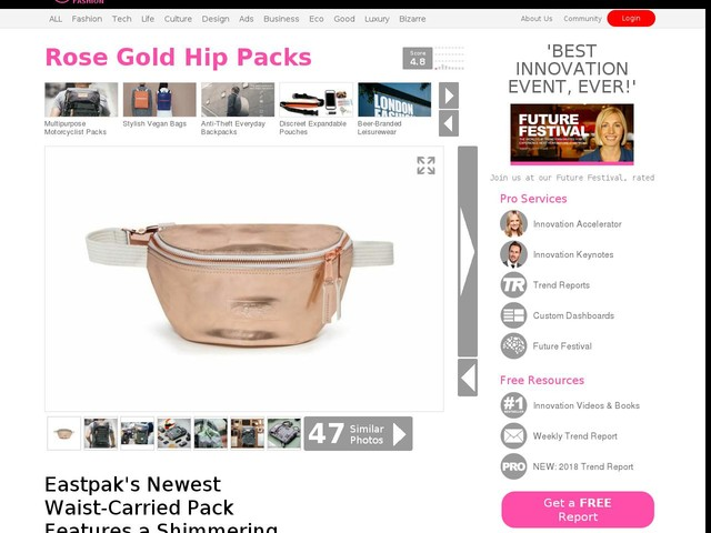Rose Gold Hip Packs - Eastpak's Newest Waist-Carried Pack Features a Shimmering Colorway (TrendHunter.com)