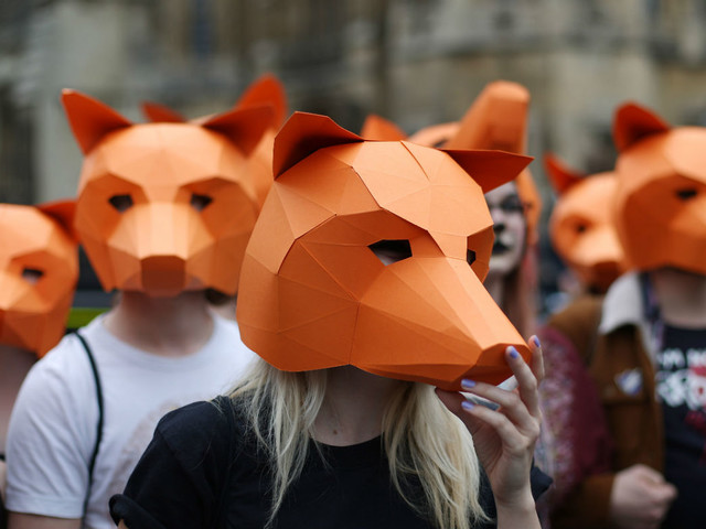 How Fox hunting became politically toxic for the Tories