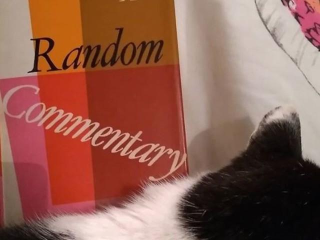 Random Commentary by Dorothy Whipple