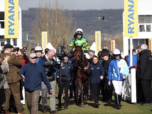 Robin Goodfellow highlights six promising horsesfrom Cheltenham Festival