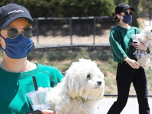 Lucy Hale sports Alone Together charity cap while carrying dog Elvis... after attending BLM protest