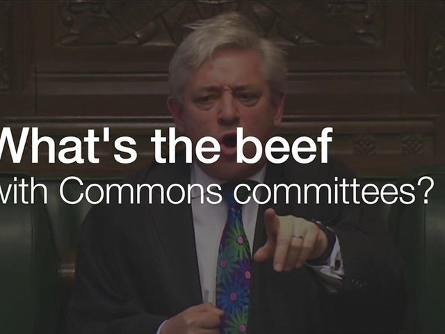 Why were MPs so worked up over parliament's committees?