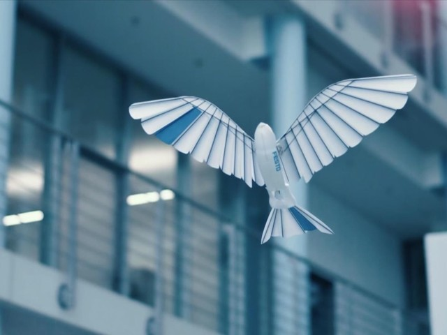 Robotic birds take to the air in amazingly realistic flight