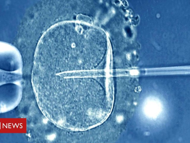 Egg-freezing: What's the success rate?
