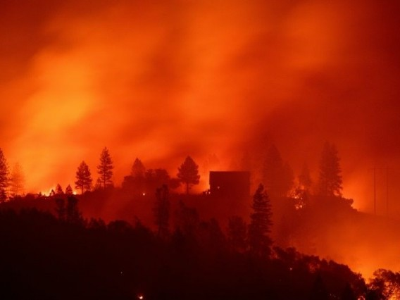 Hell in Paradise: Fire crews in grim search for California's dead
