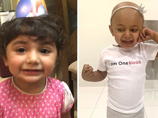 UK donor found for Florida girl, 2, fighting cancer with rare blood type found in specific gene pool