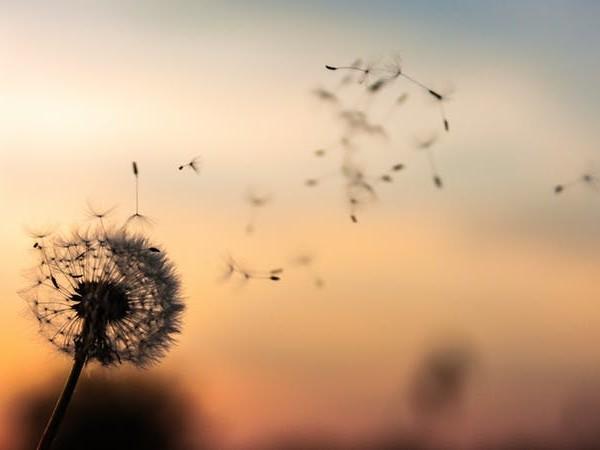 My Joy Is So Short-Lived — How Do I Make It Last?