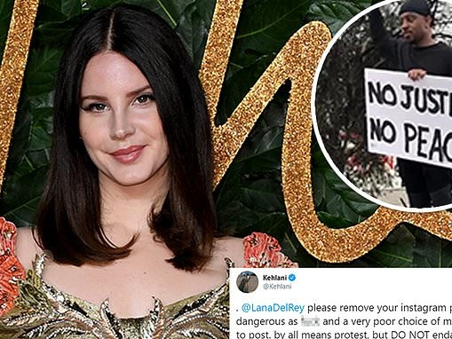 Lana Del Rey is slammed for sharing footage of protesters in Los Angeles