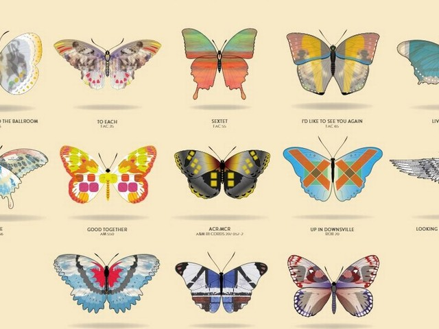 A Certain Ratio have turned their albums into an army of beautiful butterflies