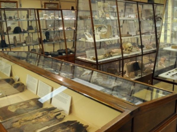London's Petrie Museum secures upgrade funding