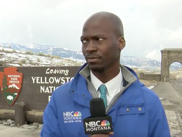 Montana Reporter Goes Viral for Reaction to Yellowstone Bison