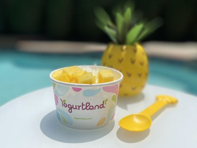 Cocktail-Inspired Frozen Deserts - The Yogurtland Plant-Based Pina Colada is Fresh and Flavorful (TrendHunter.com)
