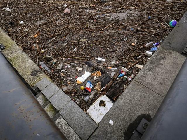 Floating island of debris in Salford Quays