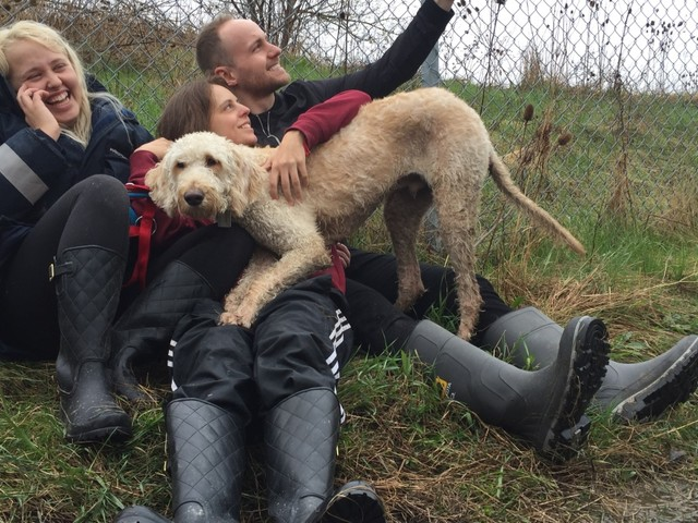 'Thousands of people helped me,' says woman reunited with dog put on wrong WestJet flight
