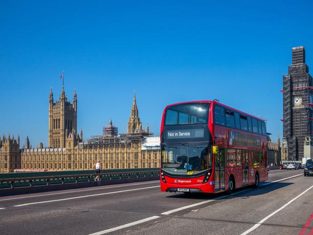 Why Do Buses Randomly Terminate?