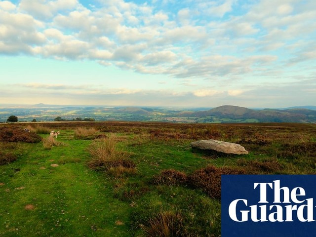 Country diary: This humble slab is as old as sedimentary rock gets