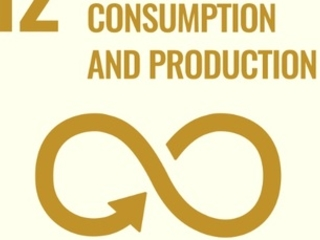 SDG12: Sustainable Consumption and Production