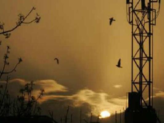 Telecom Regulator Recommends Removal Of Spectrum Cap Holding