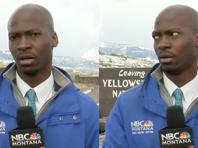 A reporter smartly ran away from a herd of bison and became the latest meme