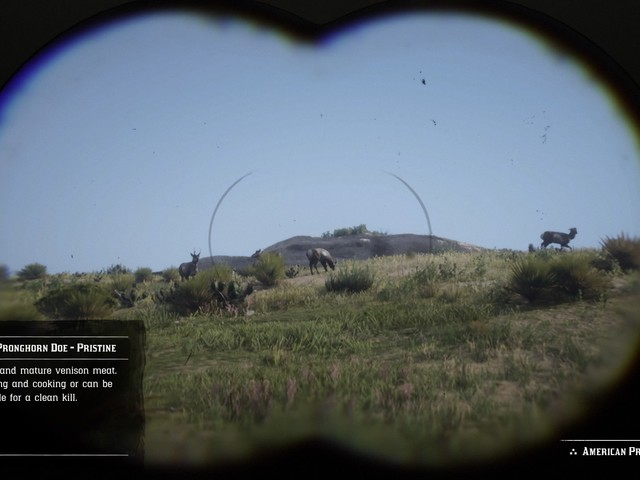 Red Dead Redemption 2 Pelts Guide – How to get perfect pelts, where to sell and store them
