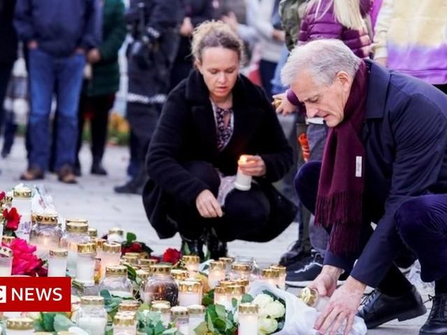 Norway attack: Killer held in medical custody amid mental health investigation