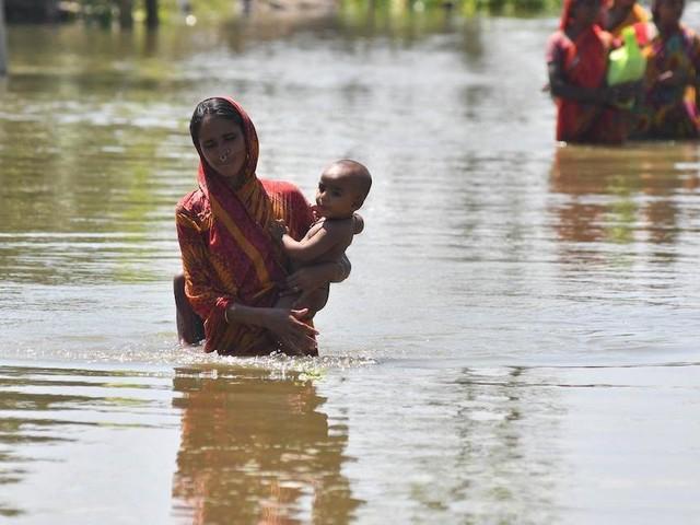 Fears of worsening India floods as torrential rains wreak havoc