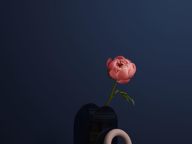 On Brief: Charlotte May x Freddie's Flowers