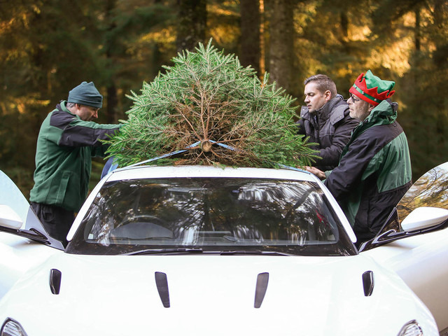 Aston Martin DB11: delivering a Christmas tree from Scotland to London