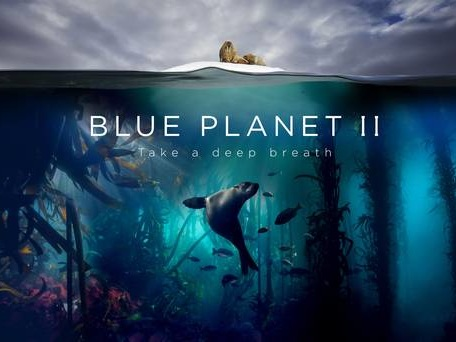 Blue Planet II - Live in Concert set for Belfast next month
